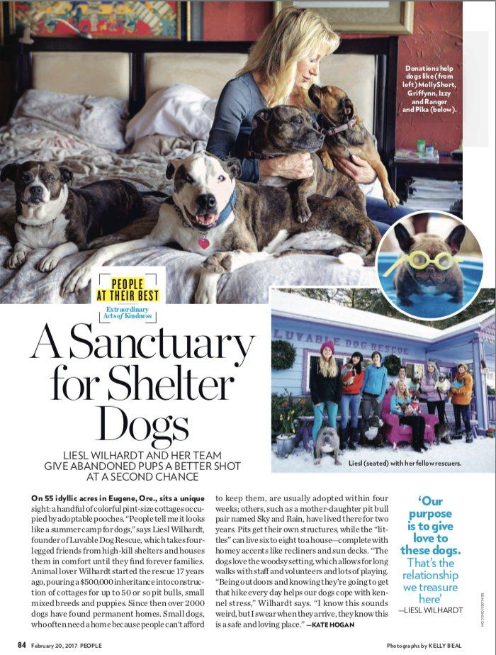 Forever Home Dog Rescue Virginia Beach